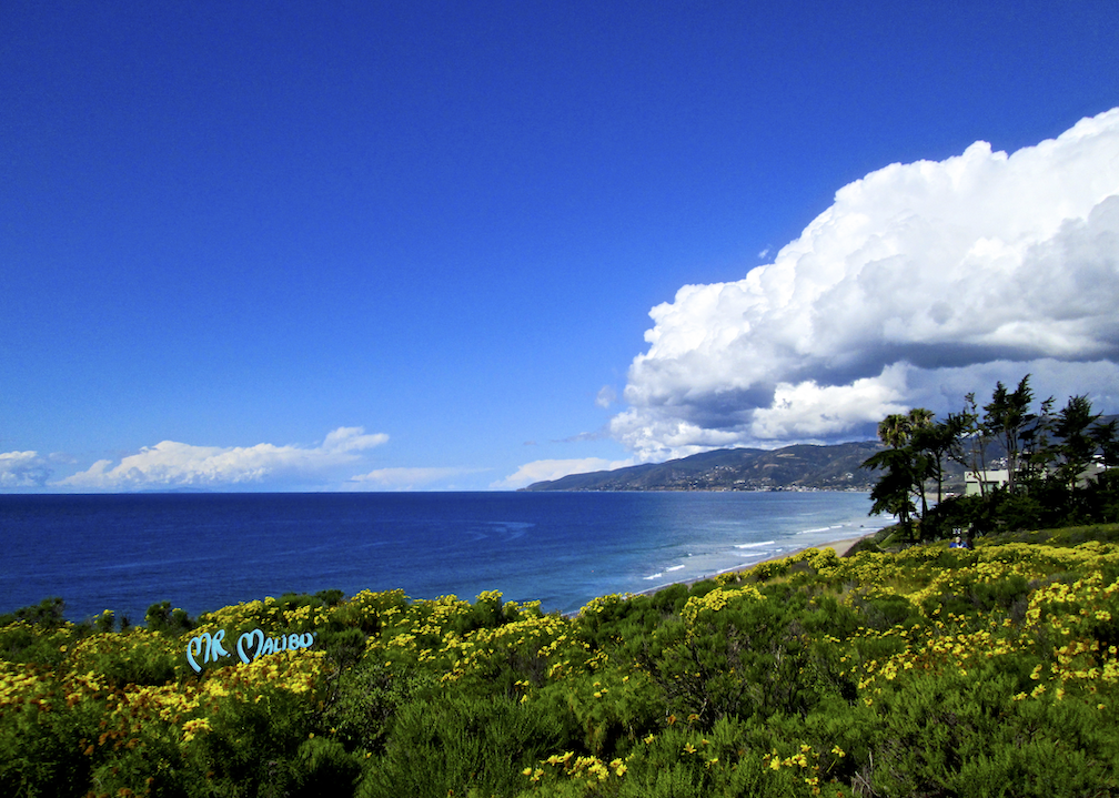 21 Bright Spring Day from Pt. Dume Cliff